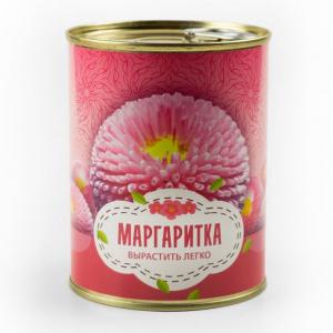 Цветок в банке «Маргаритка»